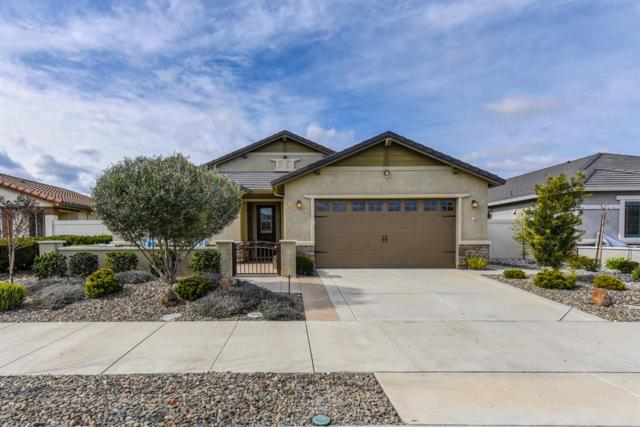 2559 Bellchase Drive, Manteca, CA 95336 (MLS #19010637) :: The Del Real Group