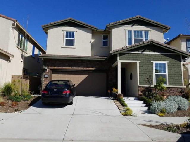 3707 Kos Island Ave, Sacramento, CA 95834 (MLS #19010946) :: Keller Williams Realty - Joanie Cowan