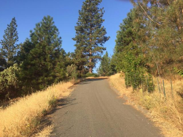 0 Ponderosa Way, Pine Grove, CA 95665 (MLS #19010965) :: REMAX Executive