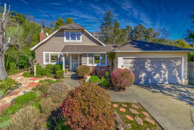 224 Blackstone Drive, San Rafael, CA 94903 (MLS #19011004) :: Keller Williams Realty - Joanie Cowan