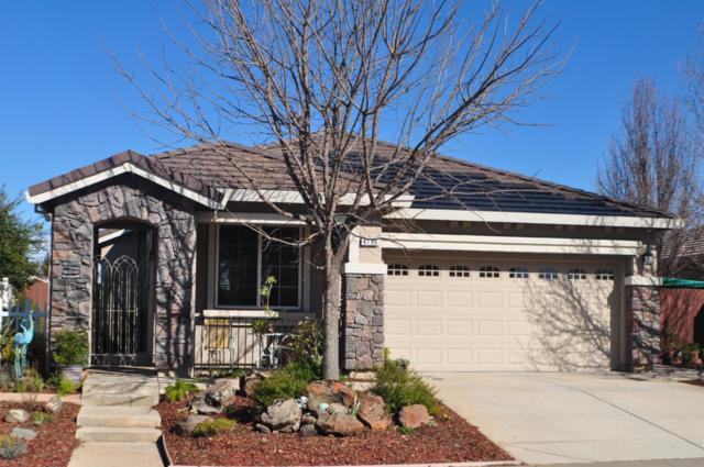 4196 Choteau Circle, Rancho Cordova, CA 95742 (MLS #19011185) :: Dominic Brandon and Team