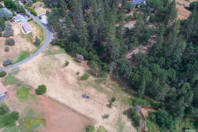 0-Lot 1659 Secret Ravine Trail, Cool, CA 95614 (MLS #19011467) :: The Merlino Home Team