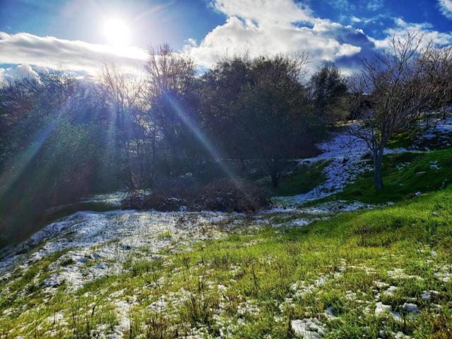 1370 Fairview Drive, Angels Camp, CA 95222 (MLS #19011898) :: Keller Williams - Rachel Adams Group
