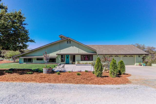 14484 Lime Kiln Road, Grass Valley, CA 95949 (MLS #19011936) :: Keller Williams - Rachel Adams Group