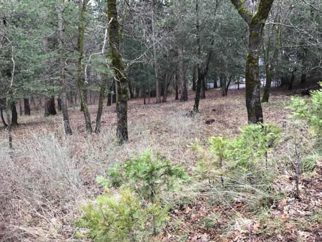 12890 Wildwood Court, Pine Grove, CA 95665 (MLS #19012082) :: Heidi Phong Real Estate Team