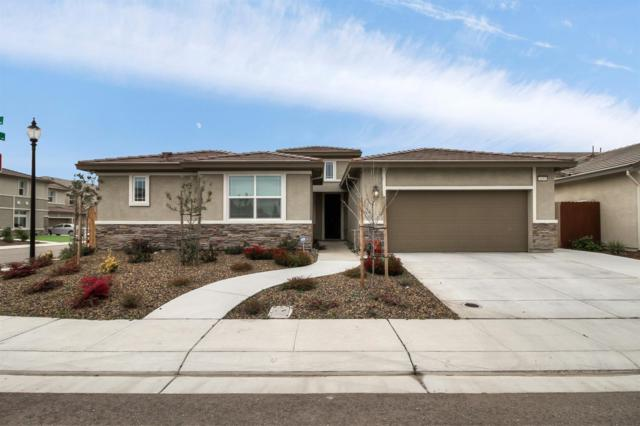 2153 Pear Blossom Place, Manteca, CA 95337 (MLS #19012321) :: Heidi Phong Real Estate Team
