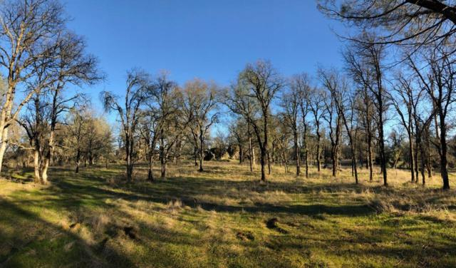 0-7 Acres Sisson Lane, Auburn, CA 95602 (MLS #19012885) :: Dominic Brandon and Team
