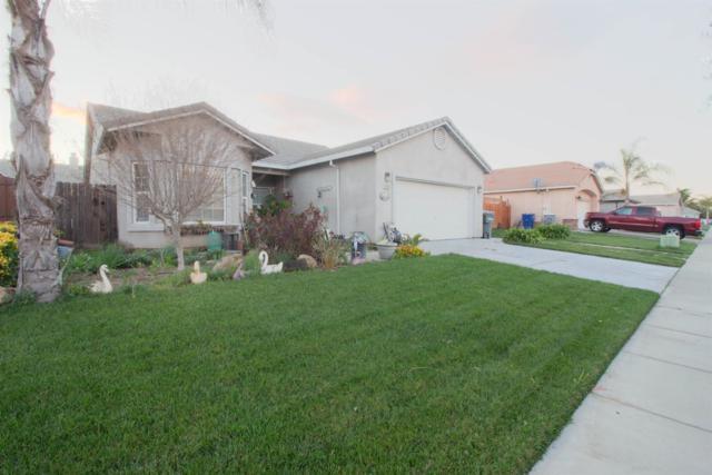 3505 Alexis Drive, Ceres, CA 95307 (MLS #19013049) :: Heidi Phong Real Estate Team