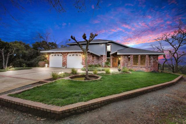 13090 Trent Court, Jackson, CA 95642 (MLS #19013133) :: Heidi Phong Real Estate Team