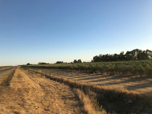 19600 County Road 95, Woodland, CA 95695 (MLS #19013367) :: The Del Real Group