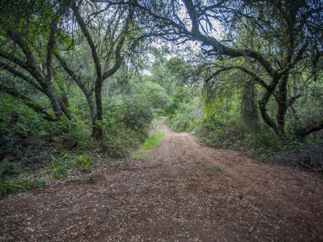0-10 ACRES Creekside Drive, Shingle Springs, CA 95682 (MLS #19013384) :: Keller Williams - Rachel Adams Group