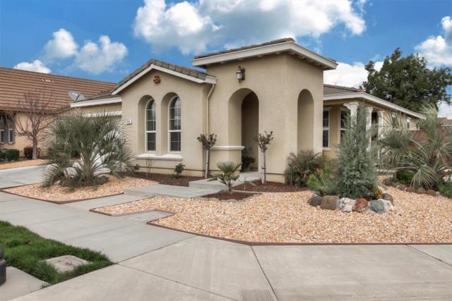 399 Applegate Drive, Oakdale, CA 95361 (MLS #19013599) :: Heidi Phong Real Estate Team