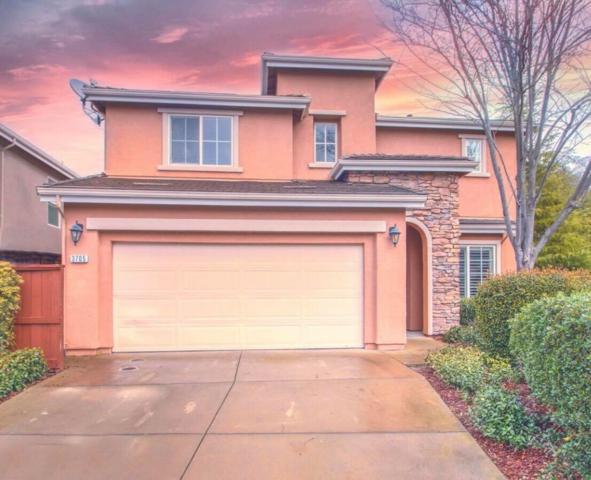 3705 Abby Court, Rocklin, CA 95765 (MLS #19013676) :: Heidi Phong Real Estate Team
