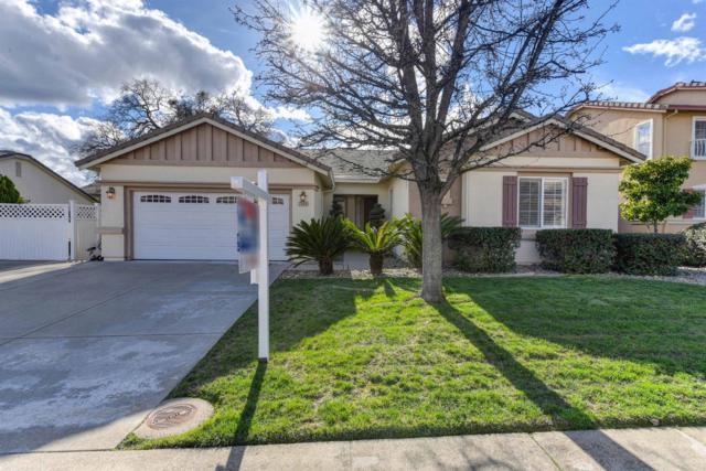 7066 Cinnamon Teal Way, El Dorado Hills, CA 95762 (MLS #19013752) :: Heidi Phong Real Estate Team