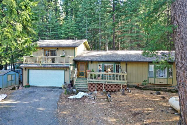 7634 Forest Glen, Grizzly Flats, CA 95636 (MLS #19013902) :: eXp Realty - Tom Daves