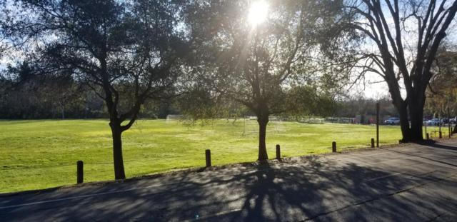 3901 Bannister Road, Fair Oaks, CA 95628 (MLS #19014008) :: Dominic Brandon and Team