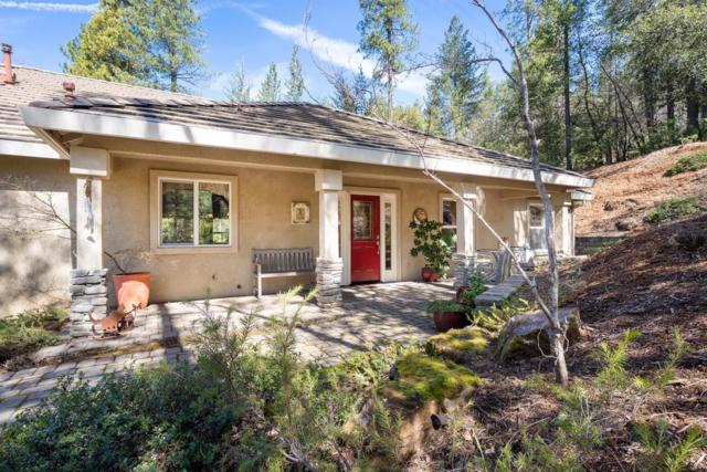 21225 Cottonwood Lane, Pine Grove, CA 95665 (MLS #19014142) :: Dominic Brandon and Team