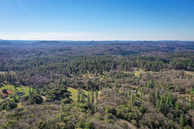 14652 Carman Court, Grass Valley, CA 95945 (MLS #19014296) :: The Del Real Group