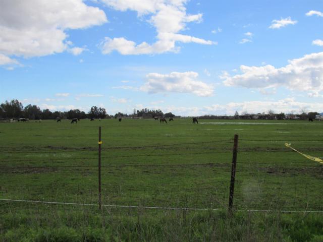 4870 Mccune Road, Winters, CA 95694 (MLS #19014354) :: Keller Williams - Rachel Adams Group