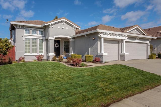 6228 Big Bend Drive, Roseville, CA 95678 (MLS #19014369) :: Heidi Phong Real Estate Team