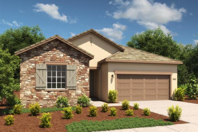 10324 Ensemble Way, Elk Grove, CA 95757 (MLS #19014448) :: Heidi Phong Real Estate Team