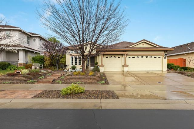 6096 Big Bend Drive, Roseville, CA 95678 (MLS #19014480) :: Heidi Phong Real Estate Team