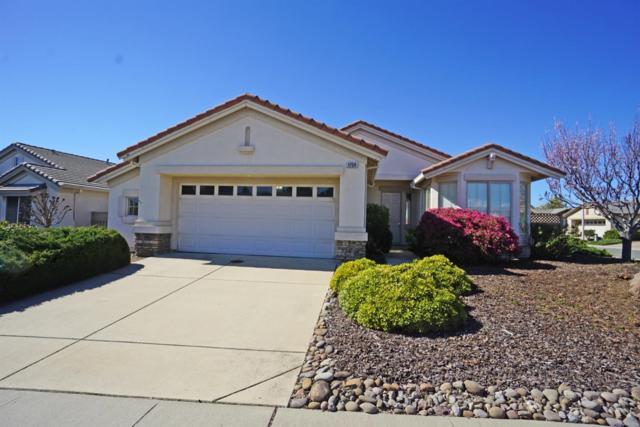 1754 Emily Lane, Lincoln, CA 95648 (MLS #19014548) :: Heidi Phong Real Estate Team