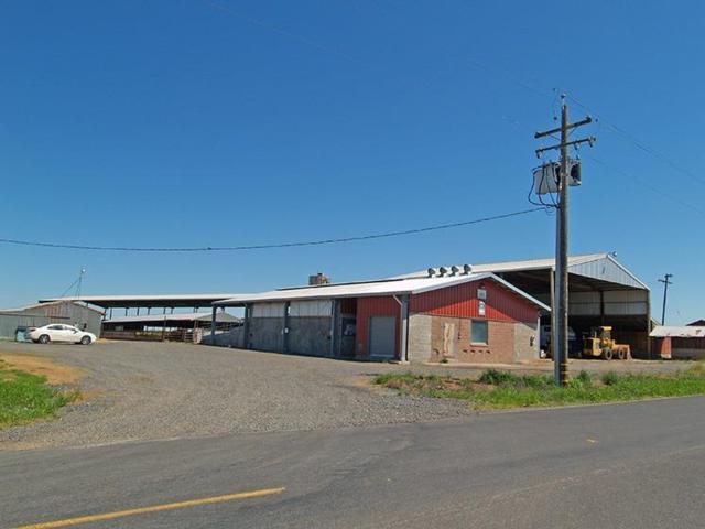 27505 E Carter Road, Escalon, CA 95320 (MLS #19014589) :: REMAX Executive