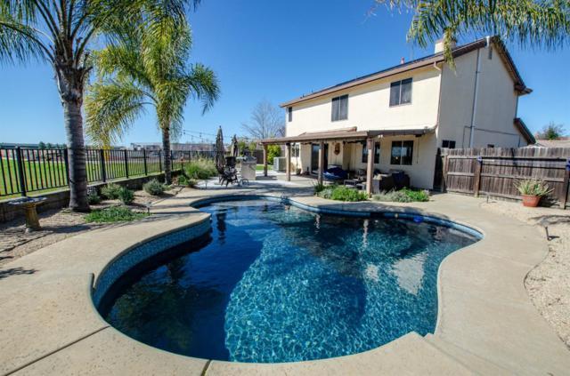 5706 Jersey Drive, Rocklin, CA 95765 (MLS #19014594) :: Heidi Phong Real Estate Team