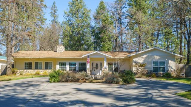 1180 Meadow Vista Road, Meadow Vista, CA 95722 (MLS #19014609) :: Heidi Phong Real Estate Team