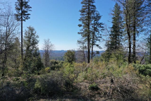 14690 Carman Court, Grass Valley, CA 95945 (MLS #19014677) :: The Del Real Group