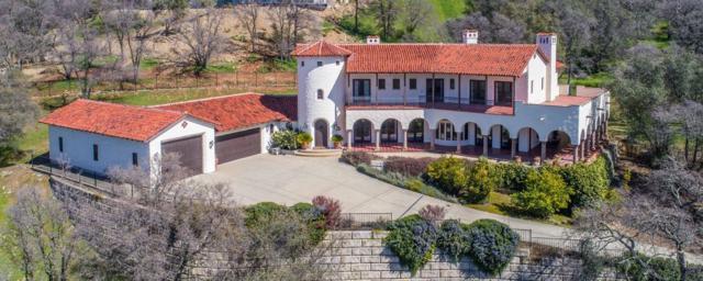 1345 Crocker Drive, El Dorado Hills, CA 95762 (MLS #19014683) :: The Del Real Group