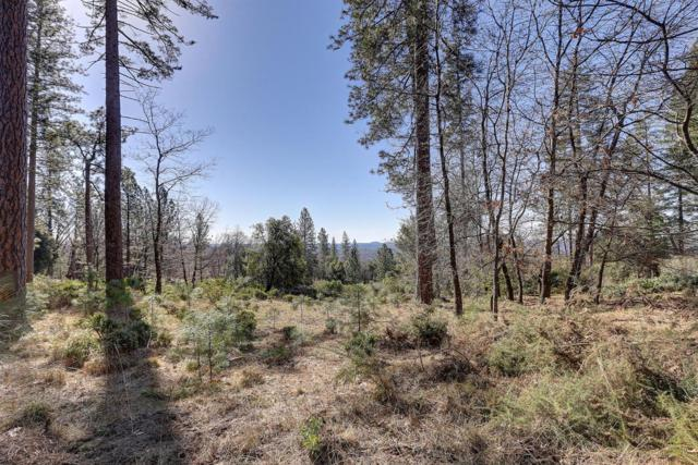 14683 Carman Court, Grass Valley, CA 95945 (MLS #19014695) :: The Del Real Group