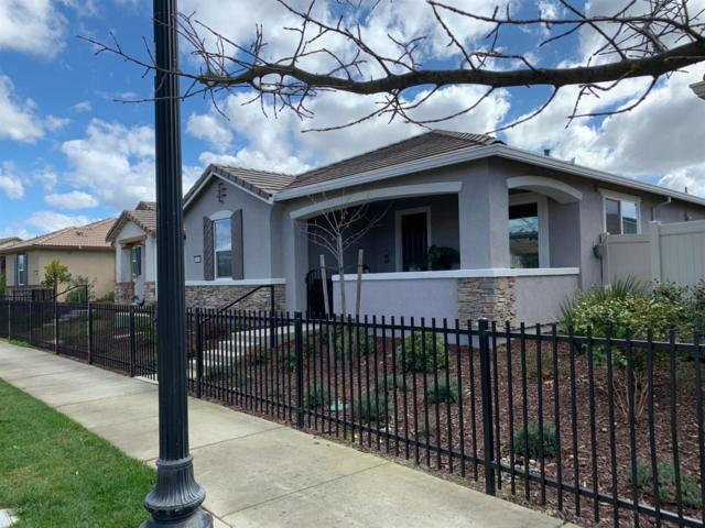 4000 Hovnanian Drive, Sacramento, CA 95834 (MLS #19014791) :: The Del Real Group