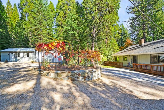 26250 Buckhorn Ridge Road, Pioneer, CA 95666 (MLS #19014841) :: REMAX Executive