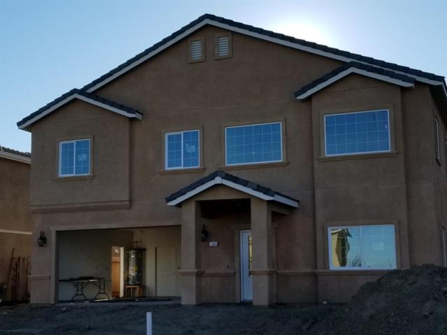 1303 Marapole Court, Newman, CA 95360 (MLS #19014846) :: The Del Real Group