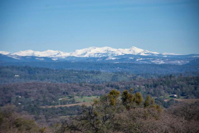 0 Carlton Lane, Placerville, CA 95667 (MLS #19014920) :: The Del Real Group