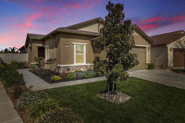 1391 Mill Run Court, Manteca, CA 95336 (MLS #19014927) :: The MacDonald Group at PMZ Real Estate