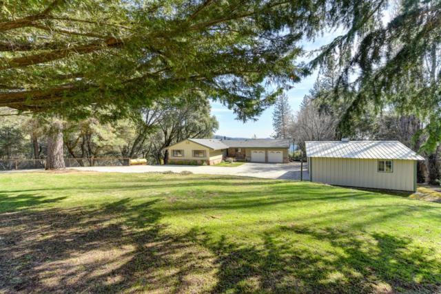 6300 Baltimore Mine Road, Foresthill, CA 95631 (MLS #19015021) :: REMAX Executive