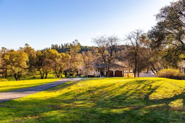 3075 Sweetwater Trail, Cool, CA 95614 (MLS #19015034) :: The Del Real Group