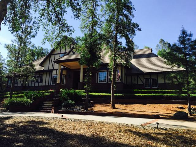21090 Christopher Circle, Sonora, CA 95370 (MLS #19015234) :: The Del Real Group