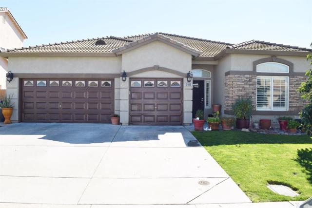 2015 Erickson Circle, Stockton, CA 95206 (MLS #19015270) :: Heidi Phong Real Estate Team