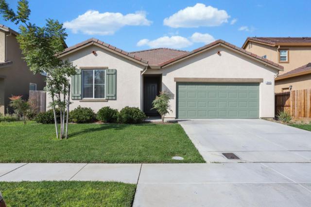 10443 Gianna Ct., Stockton, CA 95209 (MLS #19015287) :: Heidi Phong Real Estate Team