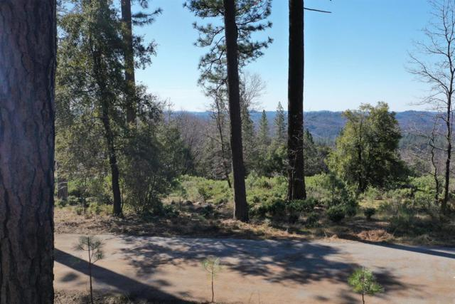 14647 Carman Court, Grass Valley, CA 95945 (MLS #19015304) :: The Del Real Group