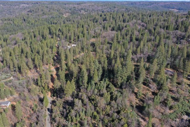 14751 Orzalli Road, Grass Valley, CA 95945 (MLS #19015311) :: The Del Real Group