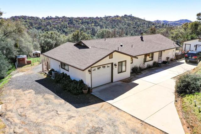 18381 Corte Del Montana, Sonora, CA 95370 (MLS #19015481) :: Heidi Phong Real Estate Team