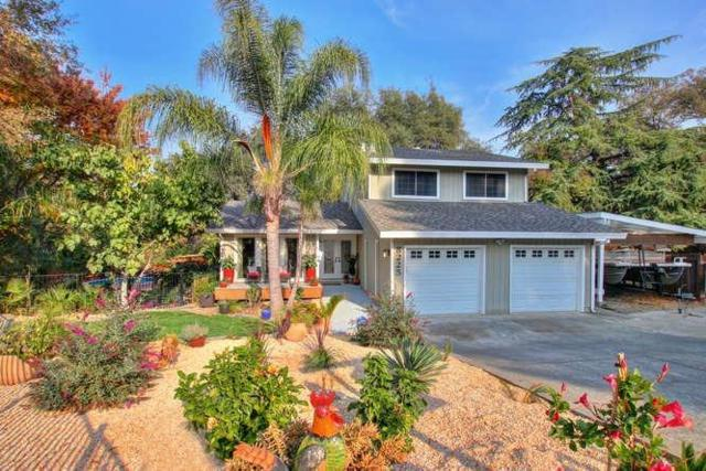 8225 War Horse Court, Orangevale, CA 95662 (MLS #19015569) :: eXp Realty - Tom Daves