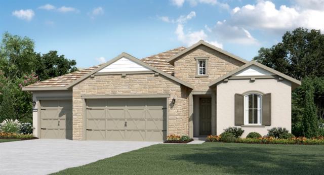 1060 Hogarth Way, El Dorado Hills, CA 95762 (MLS #19015726) :: Heidi Phong Real Estate Team