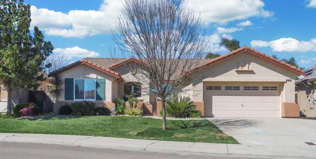 9429 Priscilla Lane, Stockton, CA 95212 (MLS #19015948) :: Heidi Phong Real Estate Team