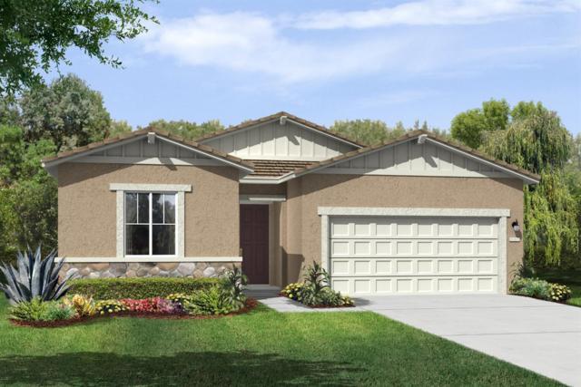161 Lentini Way, Sacramento, CA 95834 (MLS #19015996) :: Heidi Phong Real Estate Team